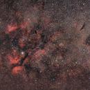 SADR, the heart of Cygnus,                                Leonardo Ciuffolotti