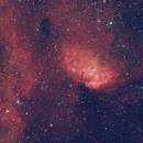 SH2-101 Tulip Nebula,                                Richard
