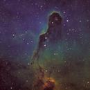 IC1396 - Elephant Trunk Nebula,                                mr1337