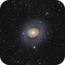 The rings of M94,                                Stefan Westphal