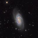 NGC2903,                                Kaori Iwakata