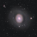 M94  Cat's Eye Galaxy,                                Mike Carroll