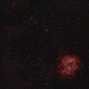 Rosette Nebula  SH 2-275 (Caldwel 49),                                GW