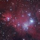 NGC2264 RGB,                                Vincent