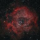 Rosette Nebula (work in progress),                                Giuseppe Donatiello