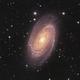 M81,                                Bill Long