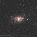 Triangulum Galaxy M33,                                Hans-Peter Olschewski