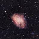M1 Crab Nebula,                                Tamas Kriska