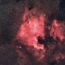 NGC 7000 - North America Nebula,                                Marco Prelini