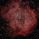 Rosettennebel (NGC 2237),                                Peter Schmitz