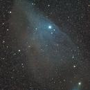 Blue Horsehead,                                Andre Brossel
