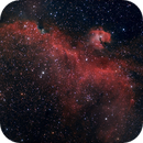 Seagull Nebula,                                jeffreycymmer