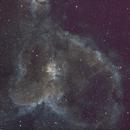 Heart Nebula,                                Will