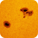 Sunspot AR2585,                                Alexander Sorokin