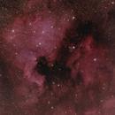 NGC 7000 Nordamerika-Nebel,                                  Horst Twele