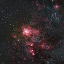 The Tarantula Nebula -NGC 2070,                                Steve Van Eerden