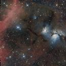 M78 meets Barnard's Loop,                                Frank Breslawski