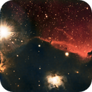 IC434 a.k.a. the Horsehead nebula,                                Jamee Donithan