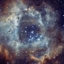 NGC2237 - BICOLOUR,                                Mattia Brunetta