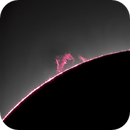 Prominences Displayed at the End of the Great American Eclipse 2017,                                Alex Roberts