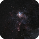 Tarantula Nebula,                                Joe Nidd