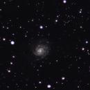 M101 Pinwheel Galaxy,                                Toni Adrover