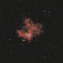 NGC1491,                                duval
