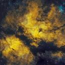 IC 1318 Gamma Cygni,                                Larry S