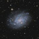 NGC 300 Galaxy,                                herwig_p