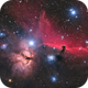Horsehead Nebula - QHY268C First Light,                                Jarrett Trezzo