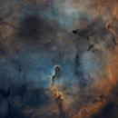 Starless IC 1396 - Elephant Trunk Nebula - Esprit 80 - ASI1600MM - Wide Field,                                  Rowland Archer
