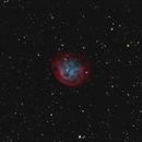 Abell 31 / Sh2-290 - dark as hell,                                equinoxx