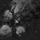 NGC 6334 - Ha,                    Gerson Pinto
