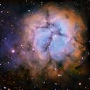 Trifid nebula M20,                                Shane Gilbert