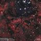 Rosette Nebula (Cadwell 49),                                Godfried
