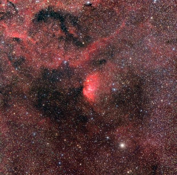 La nebulosa Tulipano,                                gagba