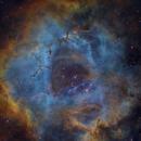 NGC2244,                                wangchen