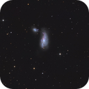 NGC 4490 - Cocoon-Galaxy - LRGB,                                Jonas Illner