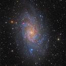 Messier 33,                                  Roman