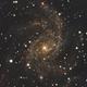 NGC 6946,                                David Newbury