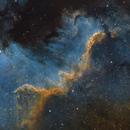 Cygnus Wall (SHO),                                John Renaud