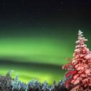 Aurora - Lapland,                    AstroSteph