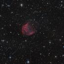 Medusa Nebula - Abell 21,                                  Michael S.