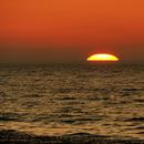 Sunset,                                  Vital