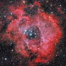 Rosette Nebula,                                AstroBDLbug