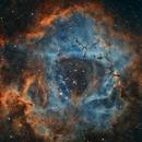 NGC 2237 - NGC 2244 - Rosette Nebula,                                Jerry@Caselle