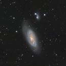 Messier 90 (Arp 76),                                Madratter