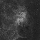 SH2-132,                                LAMAGAT Frederic