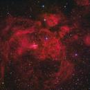 NGC 6357 Lobster Nebula,                                  herwig_p