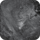 NGC2264 in Ha,                                Steven Christensen